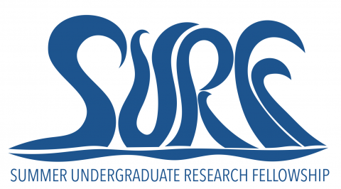 2017 2018 surf fellows undergraduate research opportunities center you are here publicscrutiny Choice Image