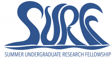 Summer Undergraduate Research Fellowship (SURF) Logo